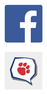 facebook-cdv